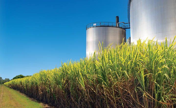 Produção de etanol hidratado cresce 15,4% no centro-sul em meio a vendas aquecidas